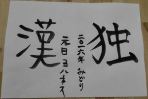 My new years resolution: Learning the Kanji