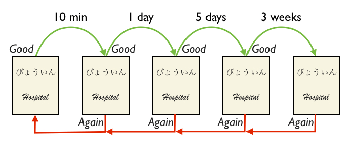 The repetition intervals are repeated on every successful review of a flashcard. If an information could not be recalled, its interval is reset to 1 minute. The repetition intervals are repeated on every successful review of a flashcard. If an information could not be recalled, its interval is reset to 1 minute.